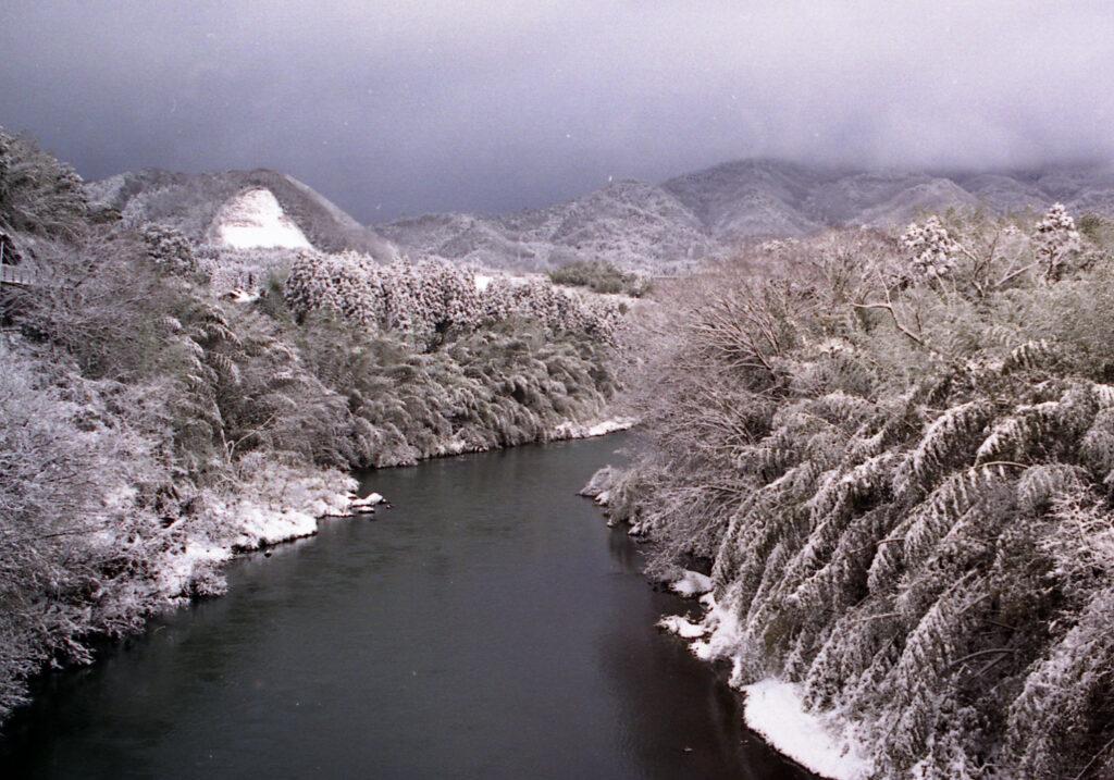 「由良川の冬日」