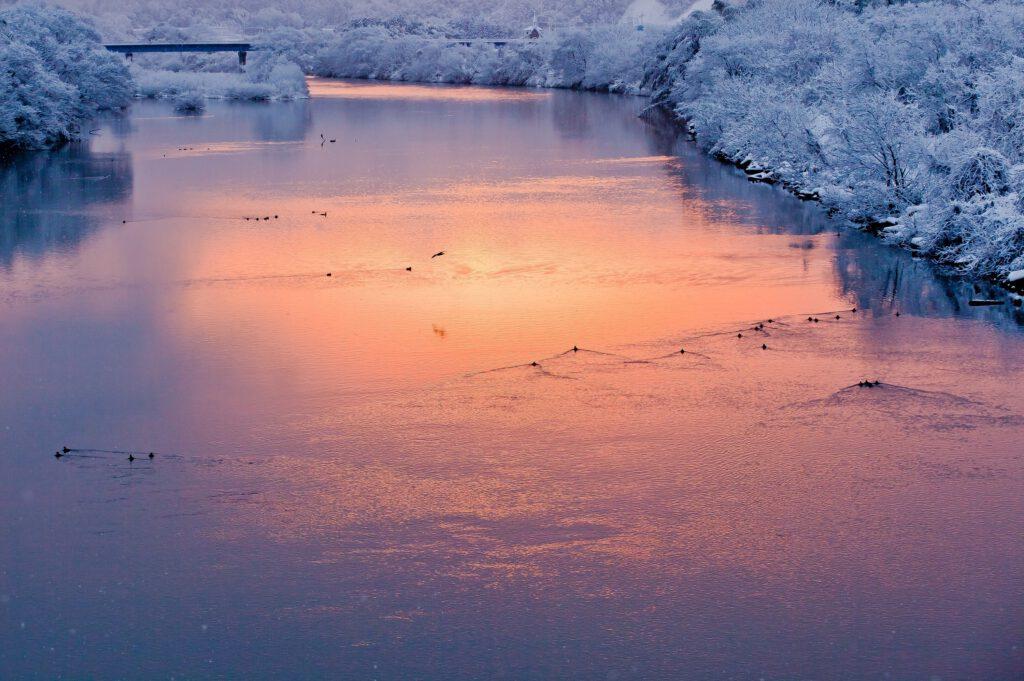 「薄雪の朝」