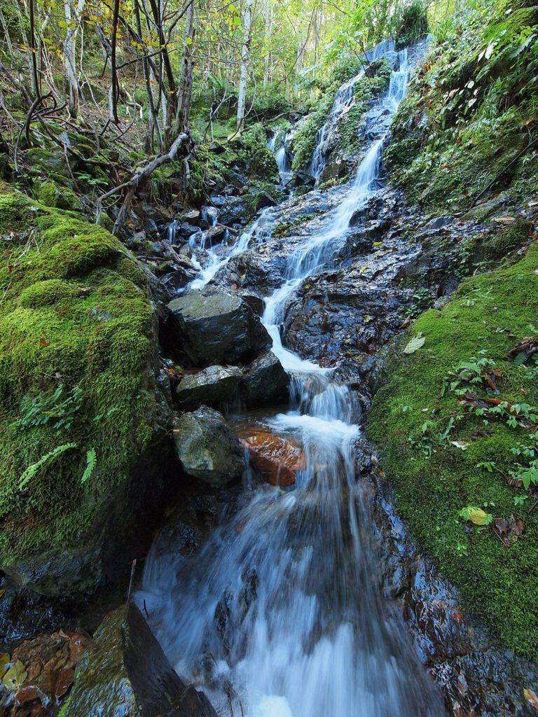 「永谷水源の奔流」
