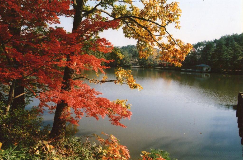 「三段池紅葉」①
