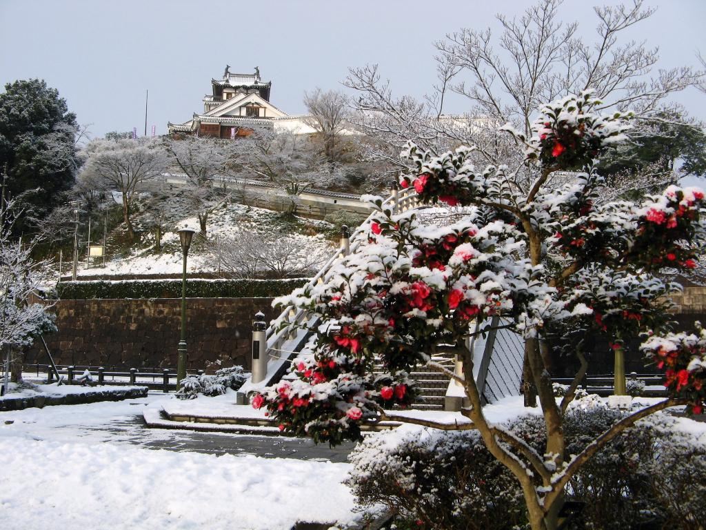 """""""The Castle in Snow"""""""