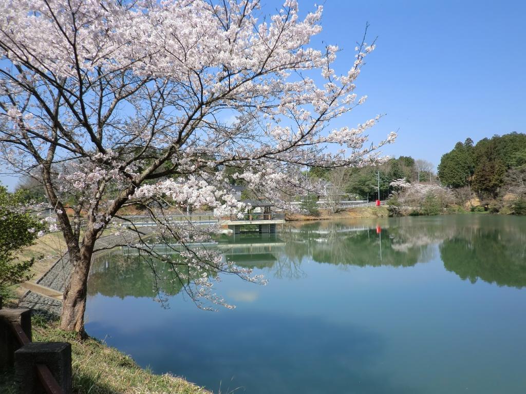 「三段池公園」