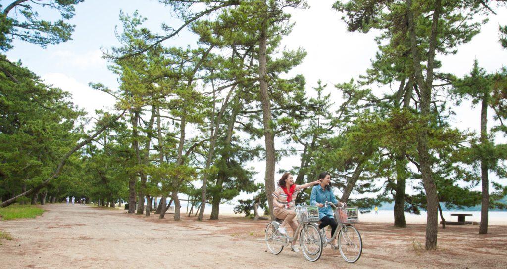 天橋立松並木のサイクリング