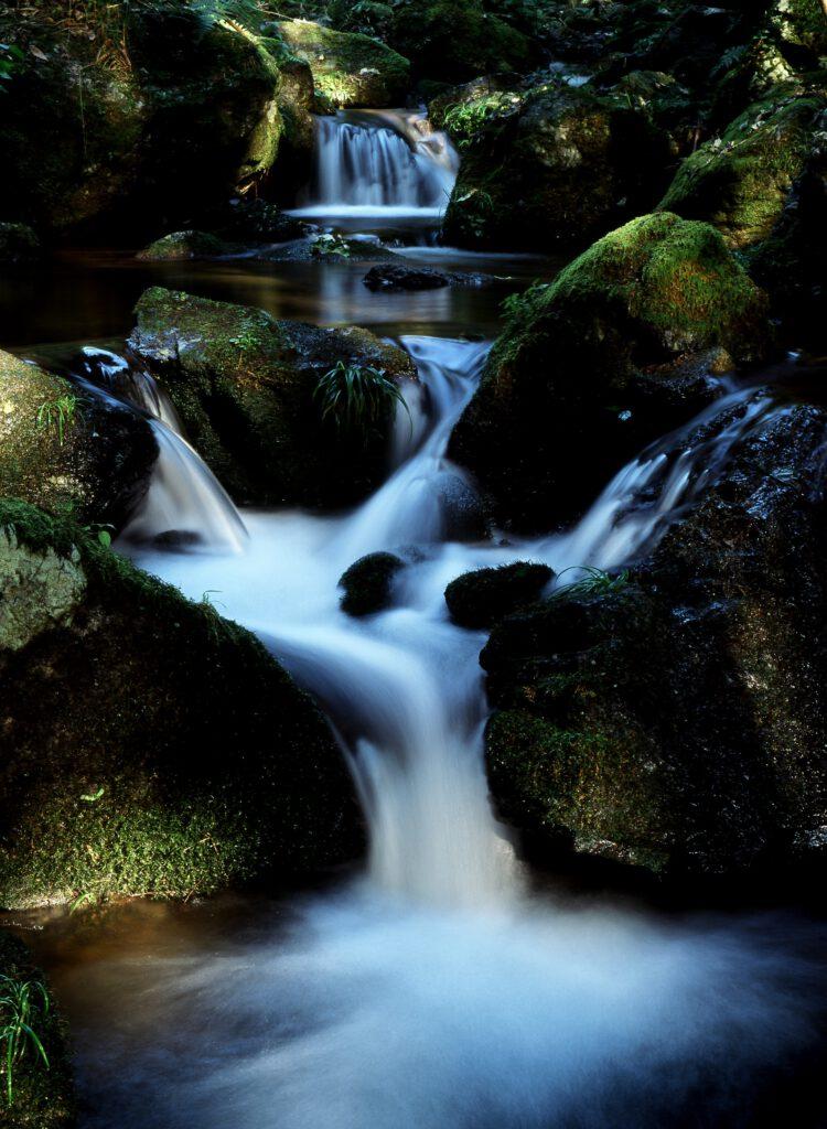 「水源の里 古屋の渓流」