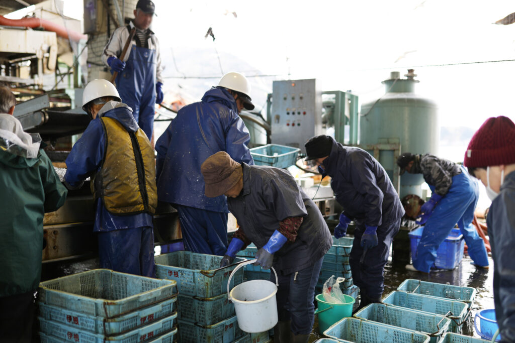 Shopping for Seafood at Ineura Fishing Port