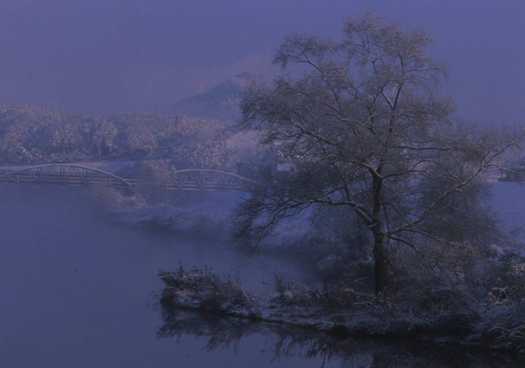 「並松雪景」