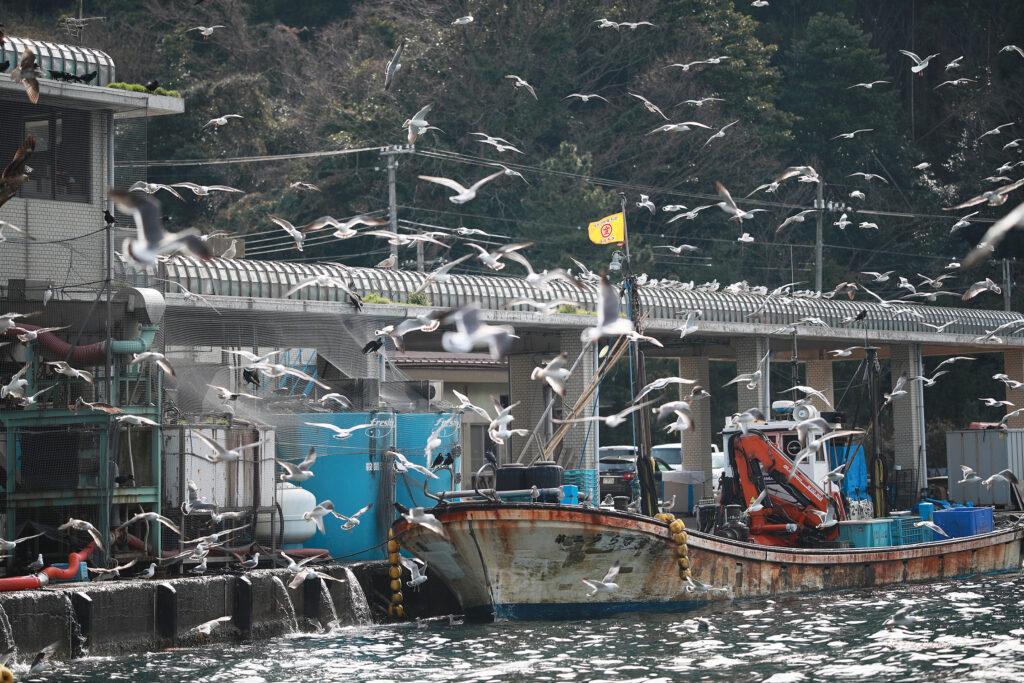 Ine-ura Fishing Port