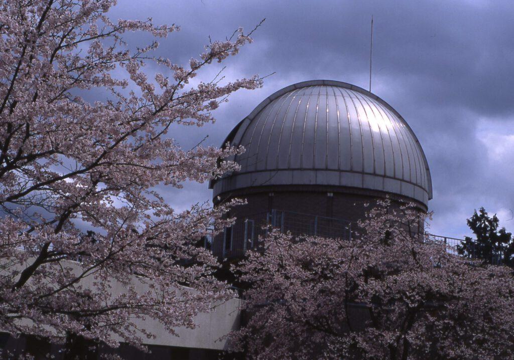 「天文館パオ」