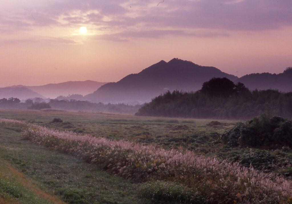 「由良川水生園の秋景」