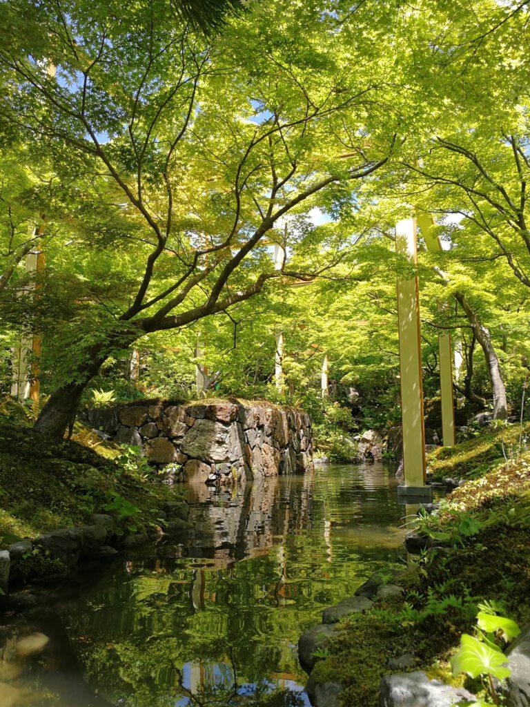 けいはんな記念公園:春 紅葉谷 緑いろ