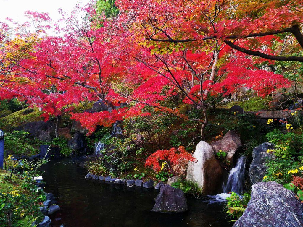 けいはんな記念公園:滝と紅葉