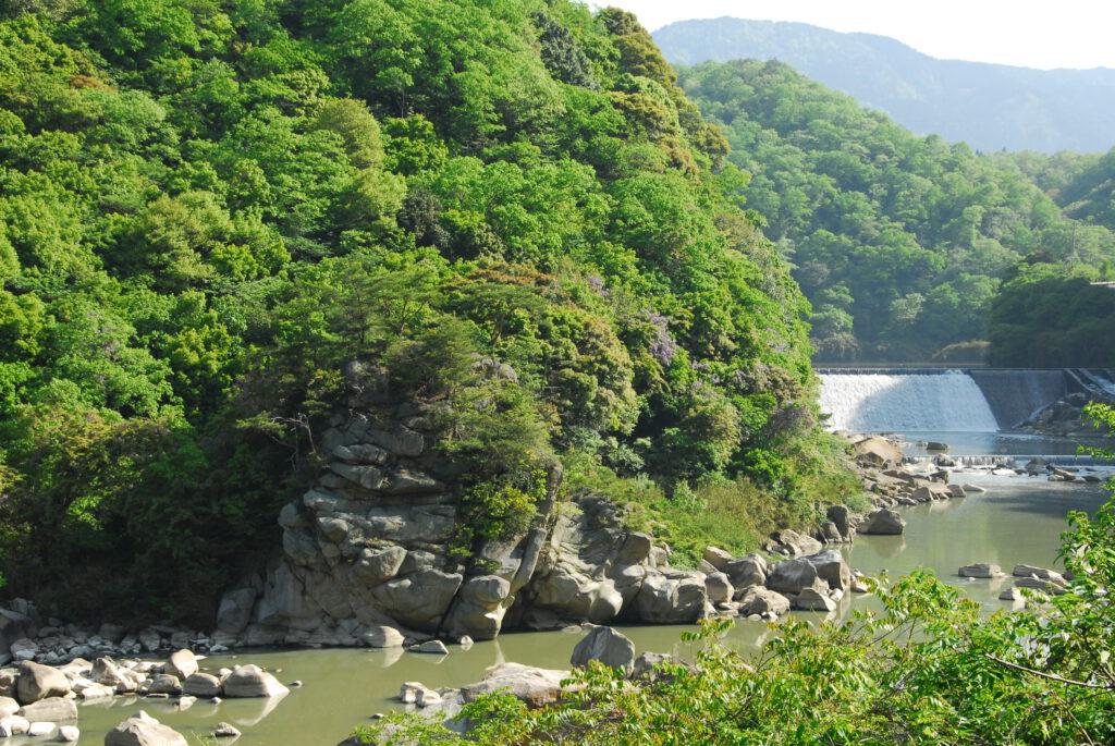 新緑の殿様岩と発電所堰堤