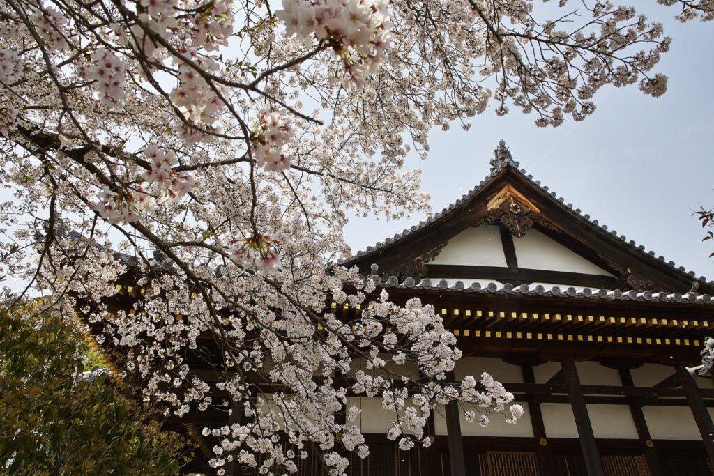 Shoho-ji Temple 2