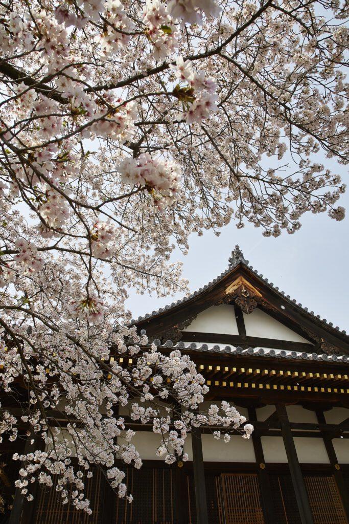 Shoho-ji Temple 3