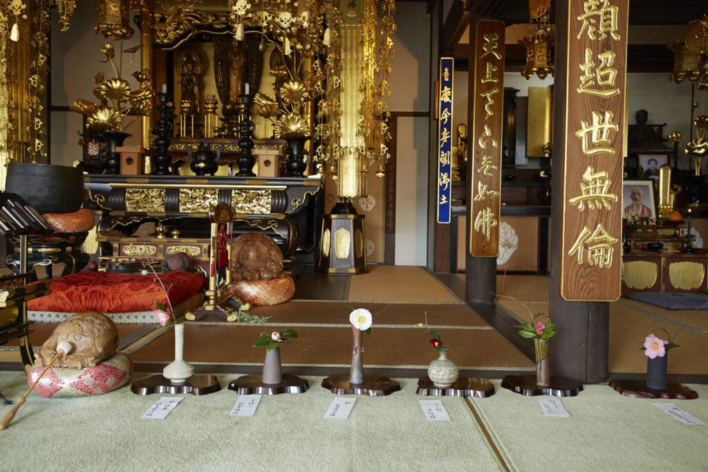 浄安寺:椿展1