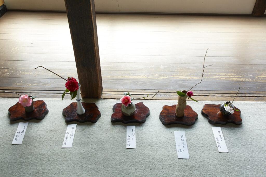 浄安寺:椿展2