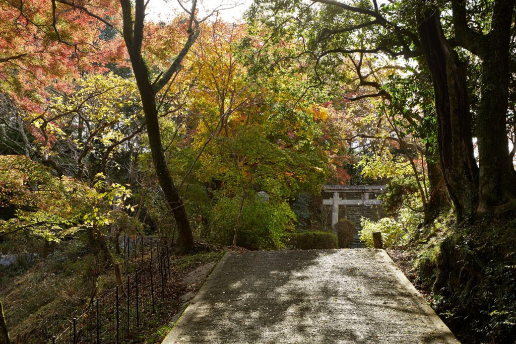 京都府立笠置山自然公園(もみじ公園):紅葉4
