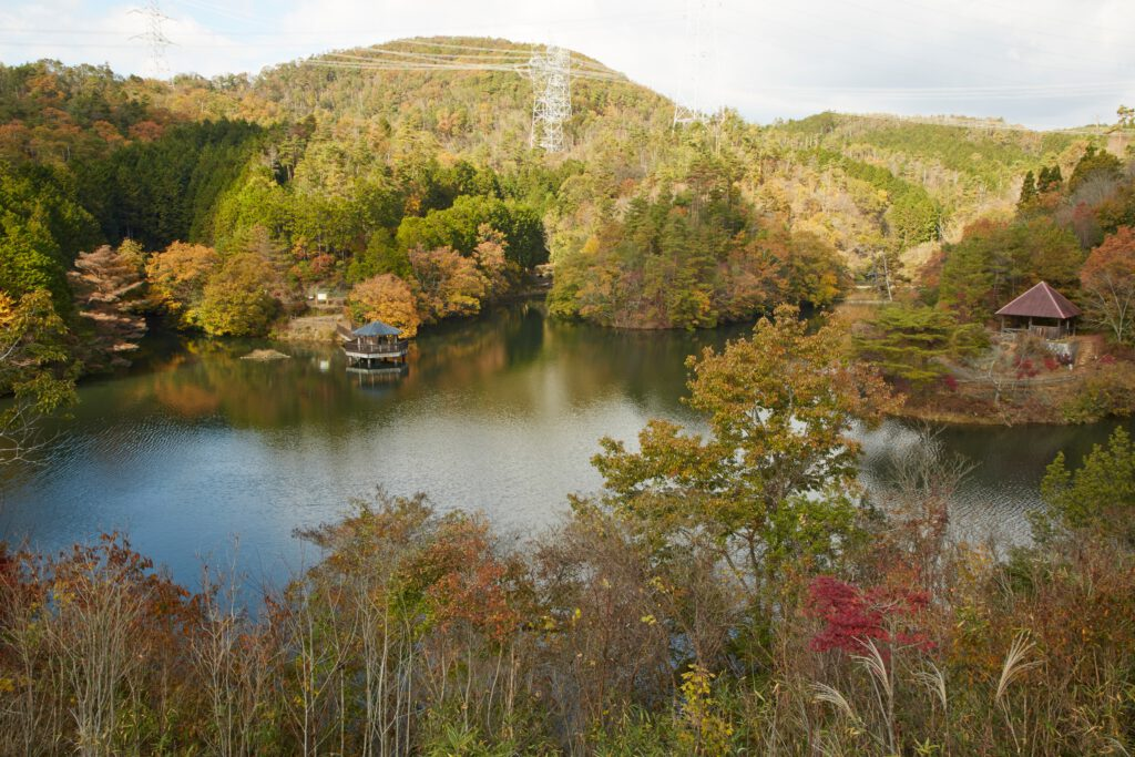 大正池グリーンパーク:紅葉1