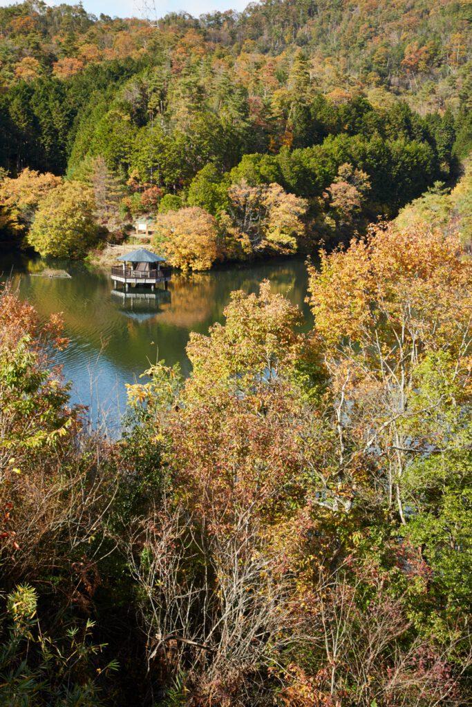 大正池グリーンパーク:紅葉2