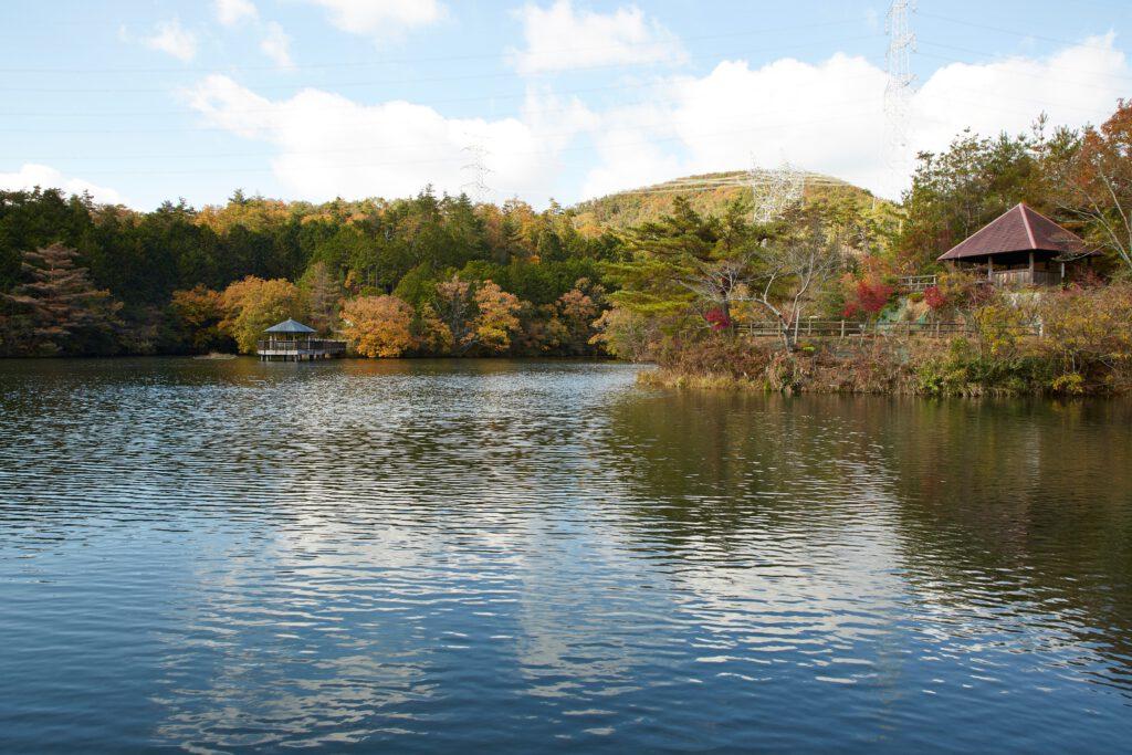大正池グリーンパーク:紅葉3