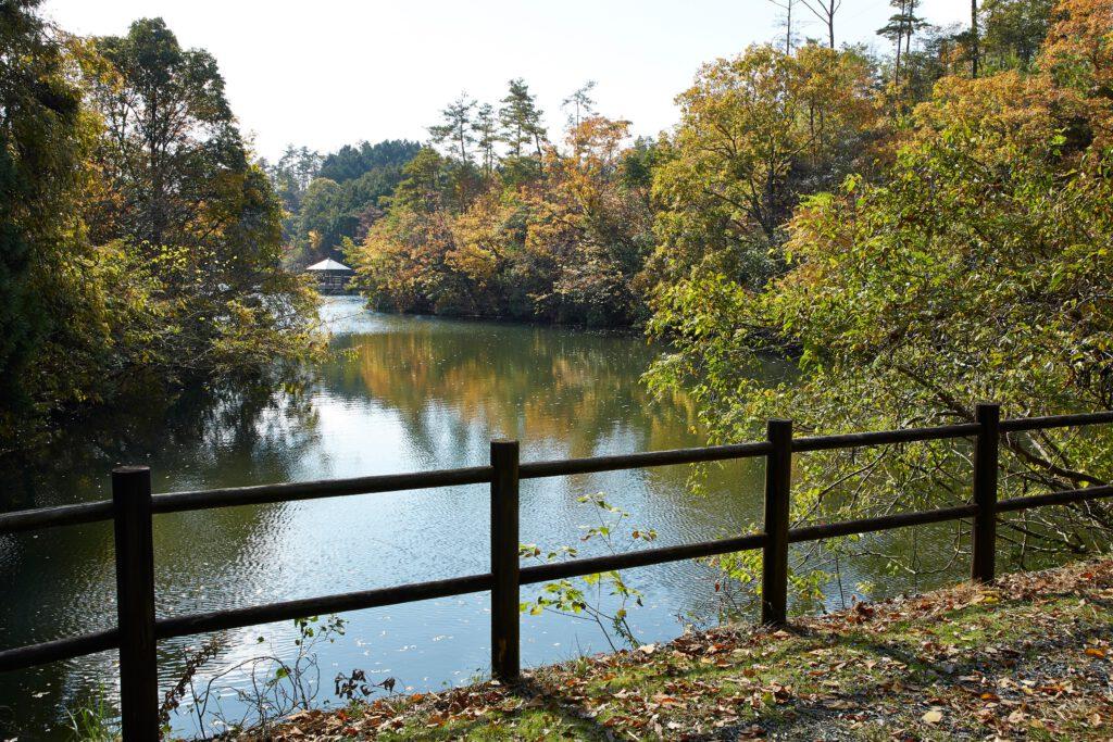大正池グリーンパーク:紅葉4
