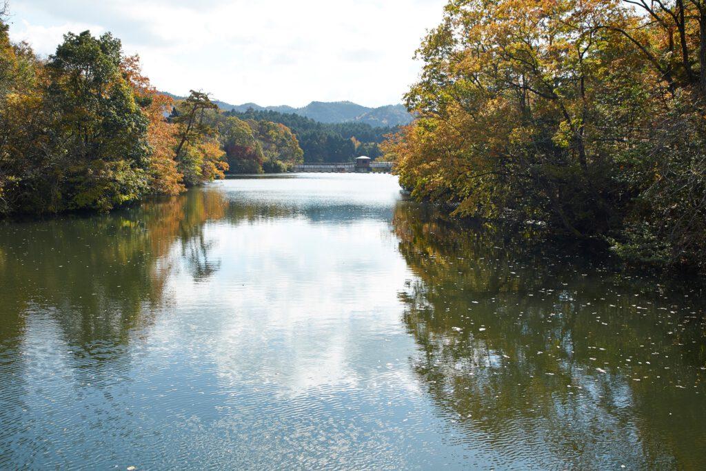 大正池グリーンパーク:紅葉5