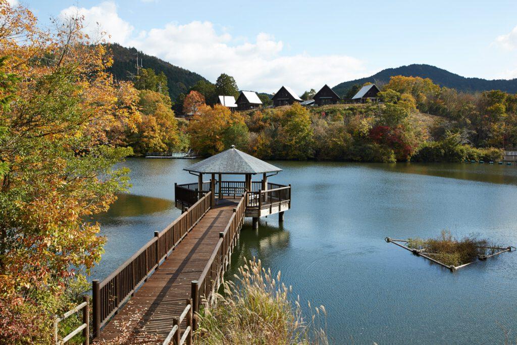 大正池グリーンパーク:紅葉7