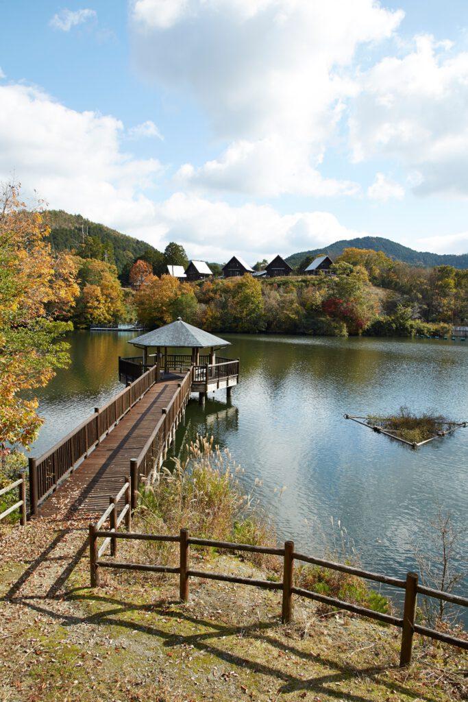 大正池グリーンパーク:紅葉8