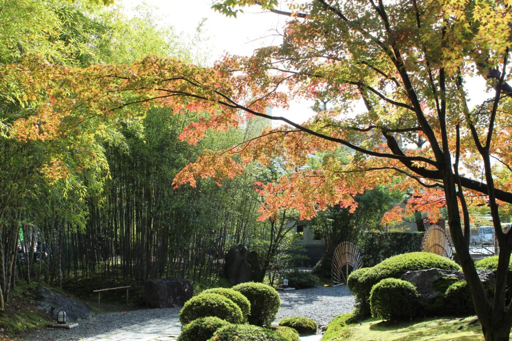 松花堂庭園:秋1