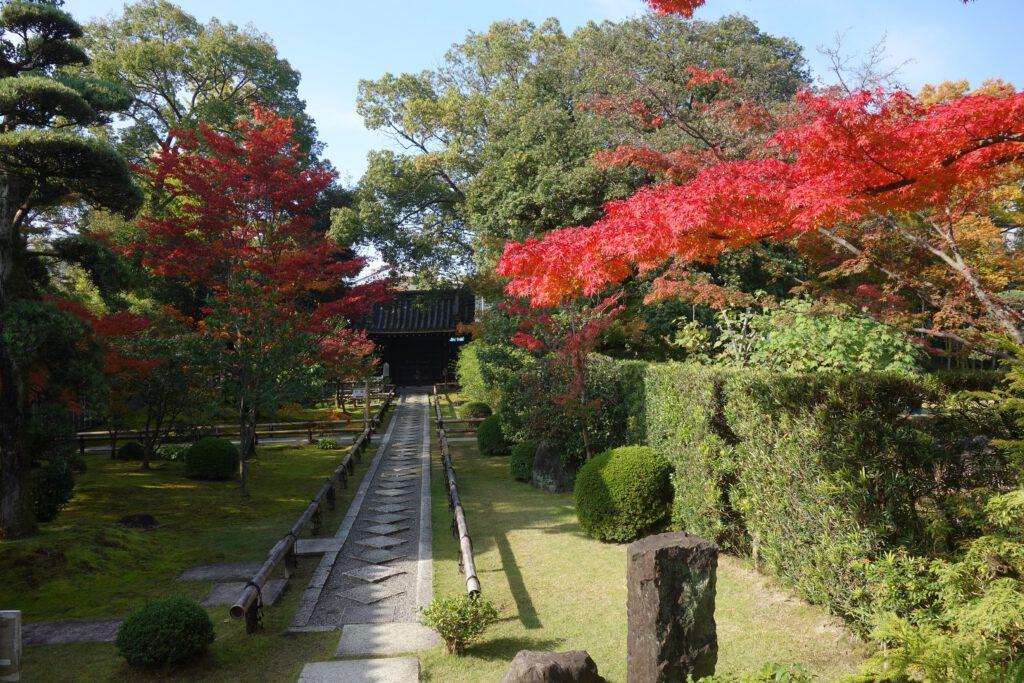 松花堂庭園:秋5