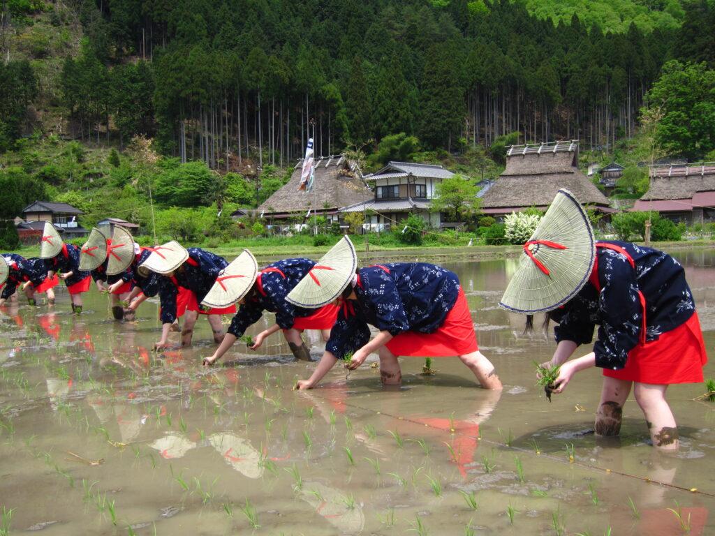 美山かやぶきの里:お田植祭