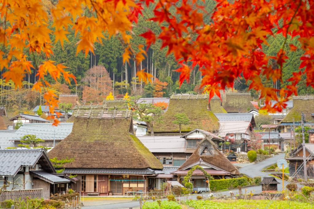美山かやぶきの里:秋