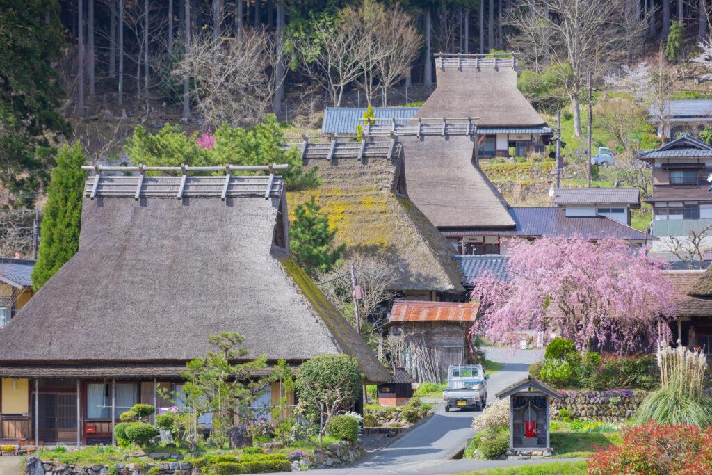 美山かやぶきの里:春